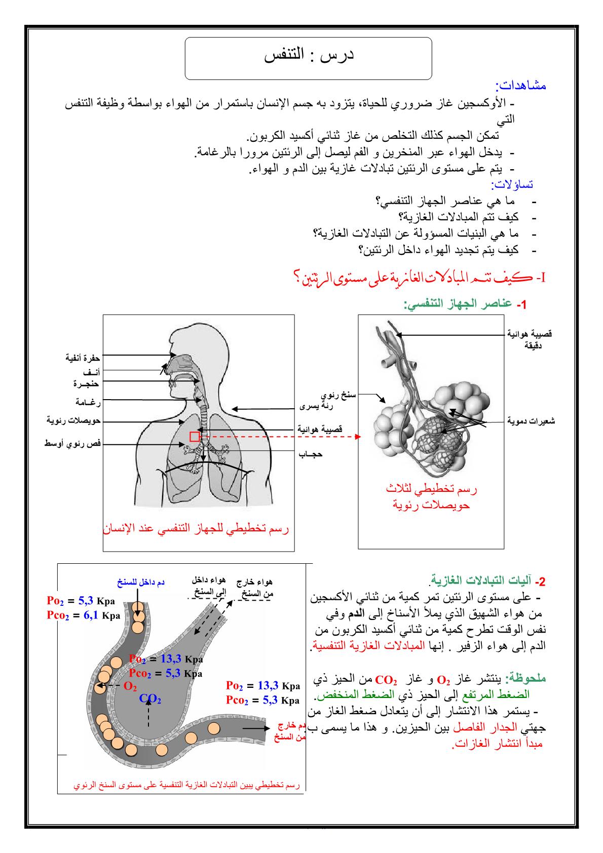 درس التنفس عند الإنسان للسنة الثالثة إعدادي
